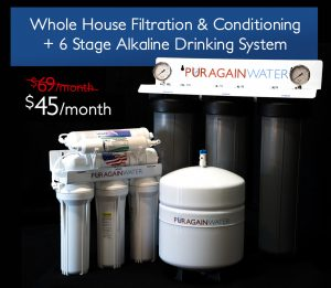 Whole House Filtration & Conditioning